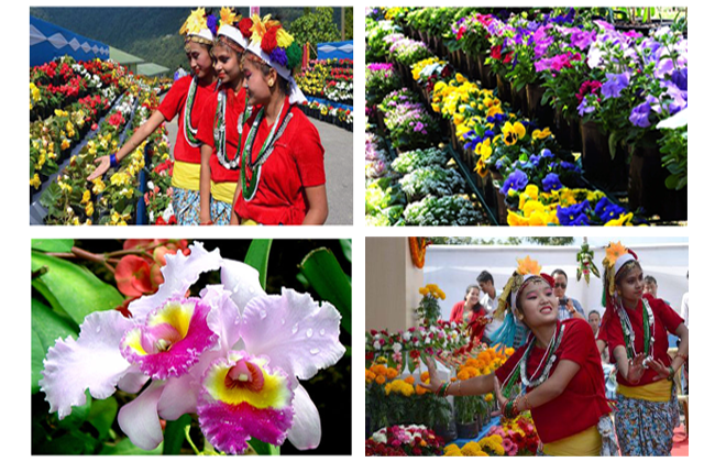 International Flower Show in Sikkim