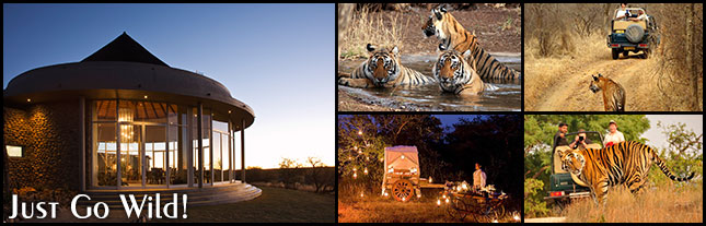 Wildlife Luxury Tours