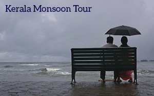 Kerala Monsoon Tour