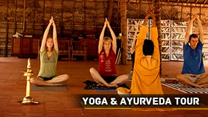 Yoga And Ayurveda Tour